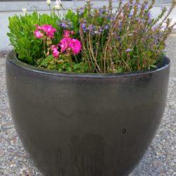 Blumentopf-Pinkler und andere Kuriositäten